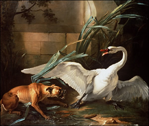Image of a dog fighting a swan -Star Trek Style